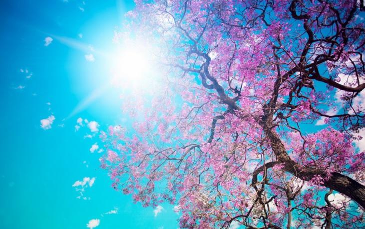 Våren är på väg!